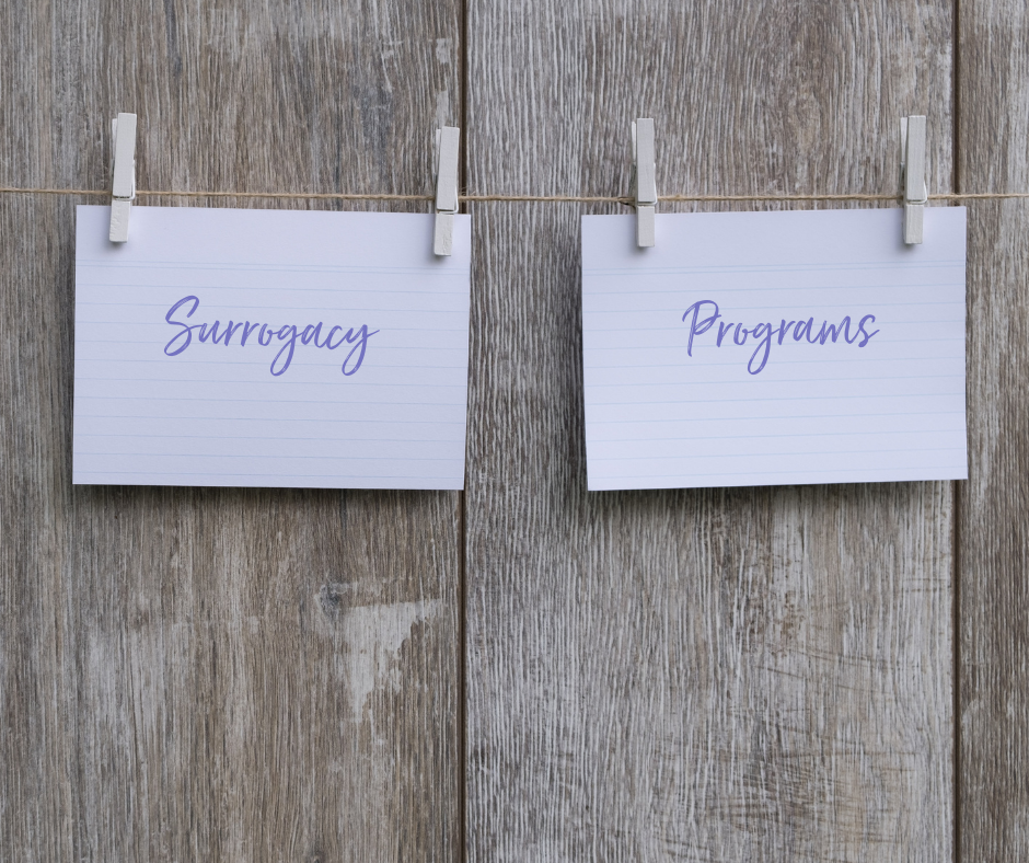Surrogacy Programs that fit your needs